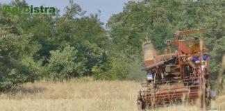 poljoprivredna gospodarstva