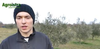 Mladi u poljoprivredi