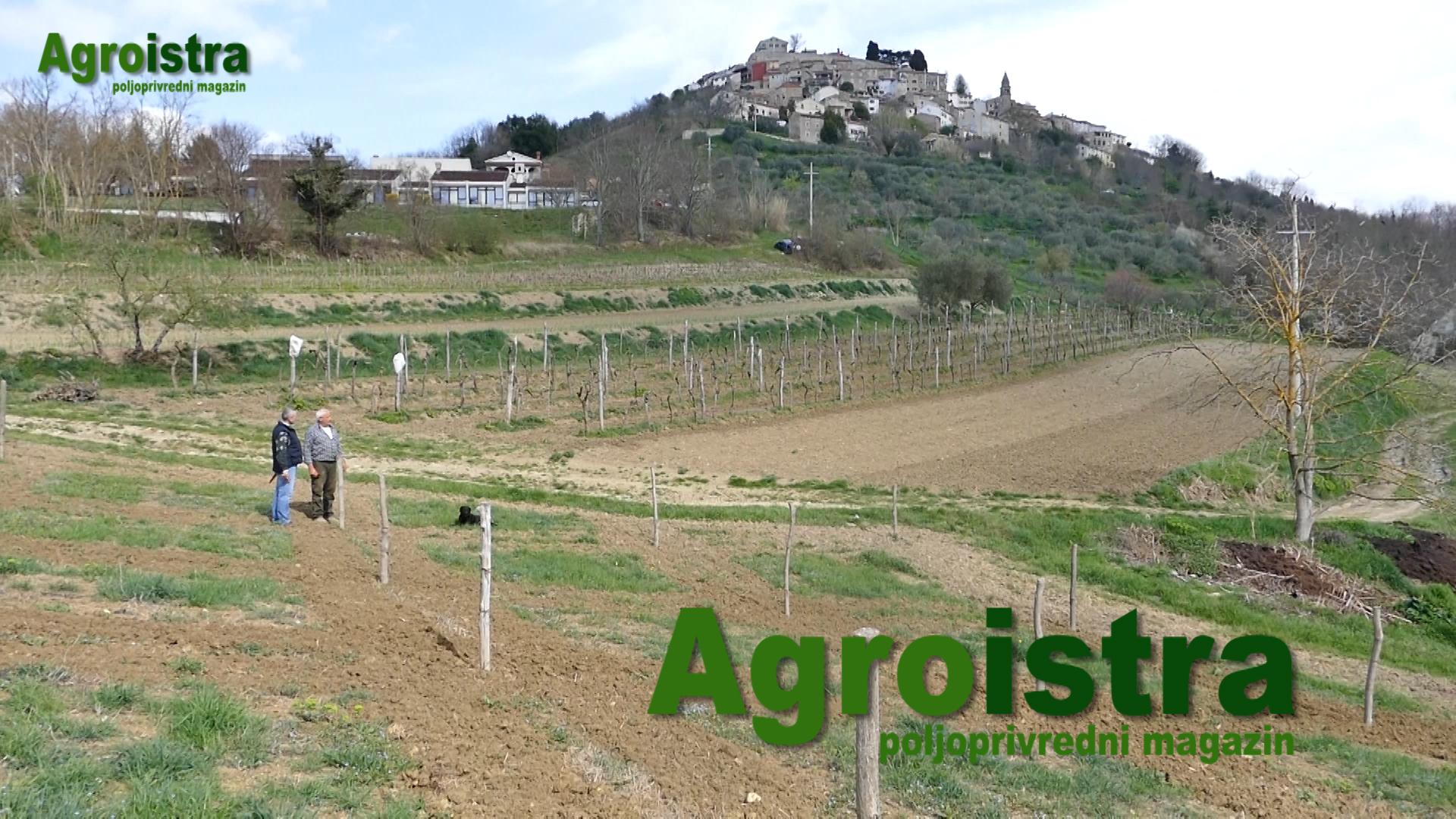 Poljoprivredni magazin AGROISTRA 8.4.2017.
