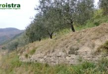 Agroistra, Suhozid, Poljoprivreda